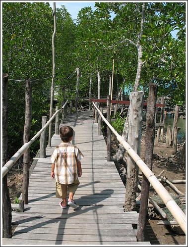 Bang Rong - Walkway to the restaurant