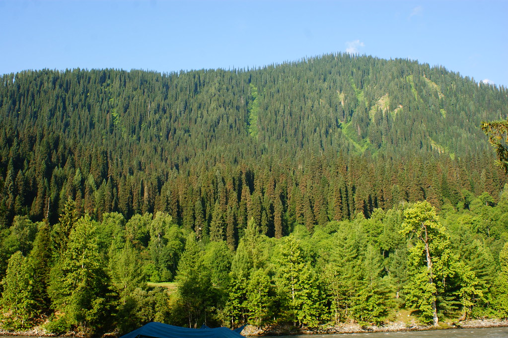 """MJC Summer 2012 Excursion to Neelum Valley with the great """"LIBRA"""" and Co - 7607870854 73467ca106 b"""