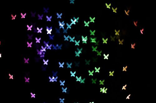 butterflies bokeh