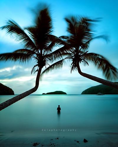 longexposure blue trees sunset seascape beach islands bay stjohn palm minimal virgin minimalism f8 maho usvi daytimelongexposure canontse24mmf35lii hitechprostop10nd