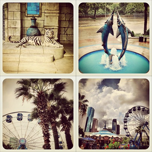 Houston Downtown Aquarium | My Instagram photos | 07/07/2012