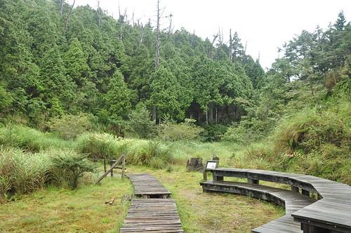 平元自然步道-白木林觀景台