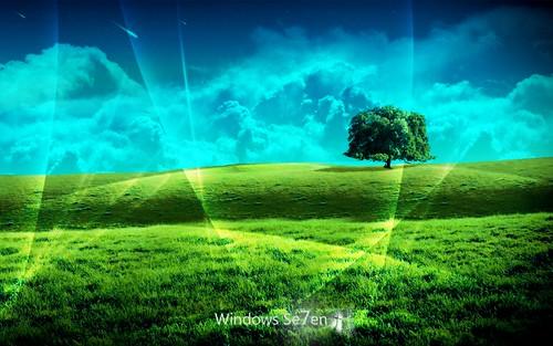 Windows 7 Wallpapers Hd Win 7 Desktop Background Grass1 Full Hd