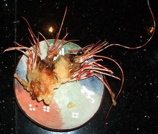 shrimp-heads