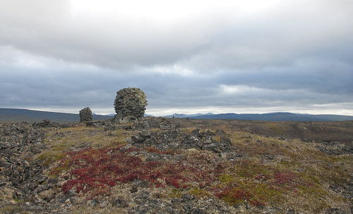 Stone structure and bearberry