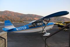 N117CP Bellanca 7GCBC at Santa Paula CA KSZP