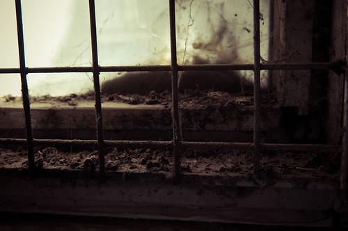 Urban Decay - Inglewood-17
