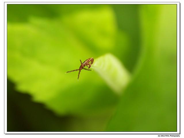 2012-04-17-P4170529_nEO_IMG