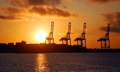 horizon, cloud, sunlight, sea, sun, evening, industry, morning, oil field, dusk, sunset, sunrise, afterglow,