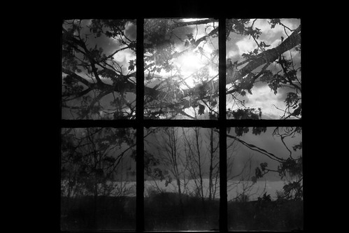 newport brooklyn hantscounty novascotia canada photo blackandwhite windowview clouds trees canondslr canoneos60d shadow light may11 2012 noiretblanc leaves branches topf25 avardwoolaverphoto sky sun bw window documentary windowpanes spring grid contemporarylandscape windowscape topf25faves flickr digitalimage monochrome avardwoolaver