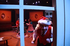 Sat, 2011-11-12 06:46 - nutcracker2011_mike-smith