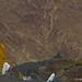 Ladakh: An Ode to BRO