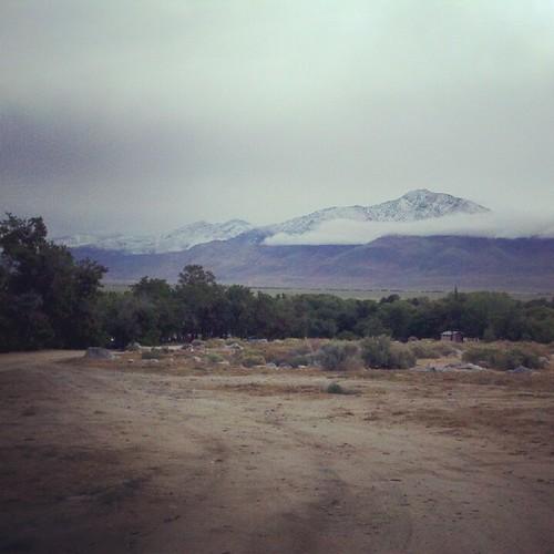 White Mtns