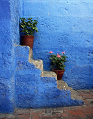 stairs, geranium and blues ... by Zé Eduardo...