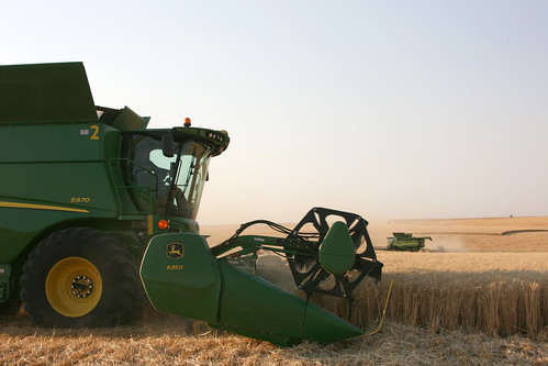 Our combines cutting away