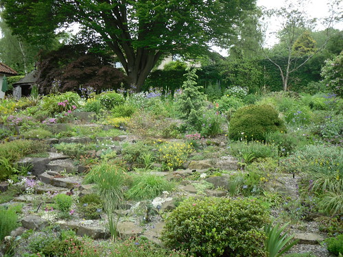 rock garden in Branklyn Gardens,Perth