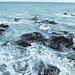 Kelp Foam by Ure.Eljay