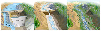 Marmot 壩移除過程示意圖(資料來源:www.marmotdam.com)