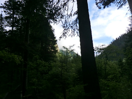 原始森林から天鵝海へ@九寨溝風景区