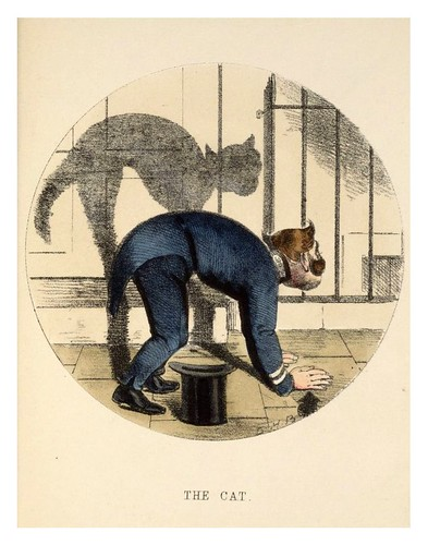 004- El gato-Shadows  185..- Charles Henry Bennett - © Harvard University Library