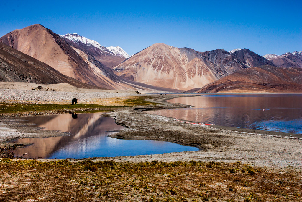 Pangong tso [Explored]