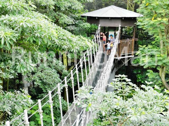 Jurong Bird Park 05
