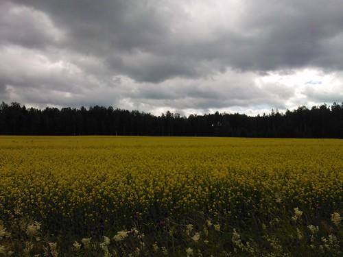 finland parikkala