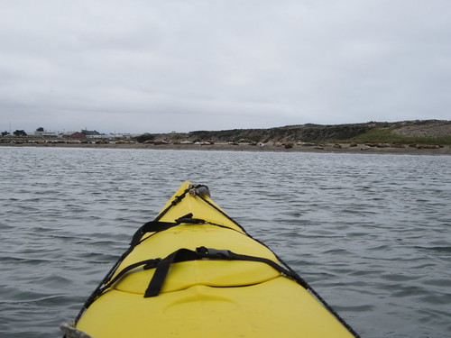 Approaching Harbor Seal Island