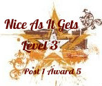 Nice As it gets level 3 award