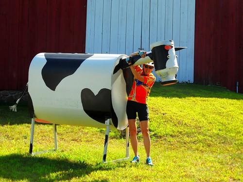 katy metal cow