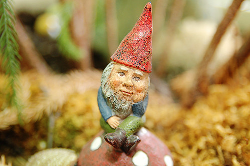 the wee forest gnome in his home.