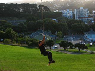 Swing near Wellington Zoo