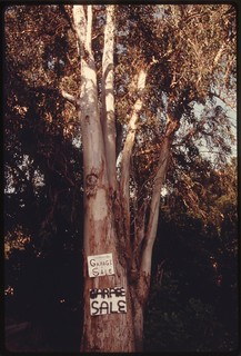 Garage sale sign attached to a tree off Mulholland Drive in the Santa Monica Mountains denotes recent development near Malibu, California, which is located on the northwestern edge of Los Angeles, May 1975