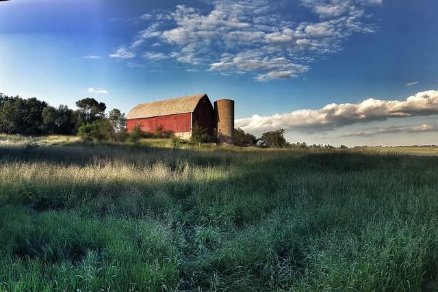 Wisconsin Pasture