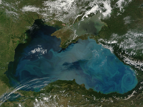 Phytoplankton bloom in the Black Sea