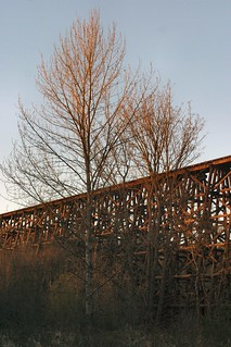 Trestle with Trees
