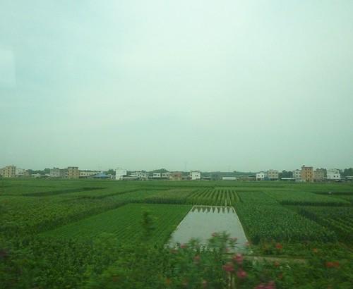 C-Guangxi-Route Nanning-Bei Hai (50)