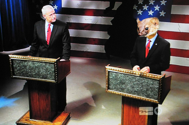 To Me It Looked Like a Debate between a Leader and a Weasel