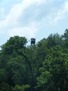 Broad River Paddling May 26, 2012 12-31 PM