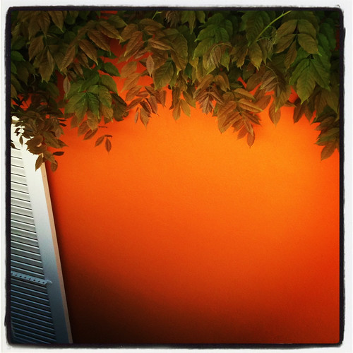 neuchatel_orange
