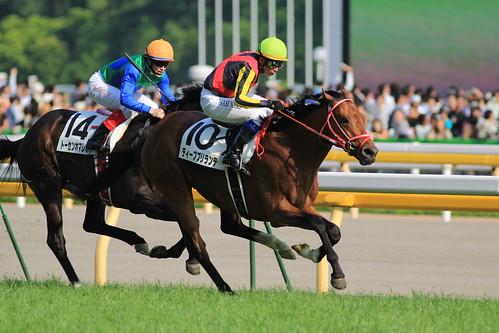 日本ダービー勝ち馬 ディープブリランテ(岩田康誠)