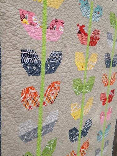Stems Quilt Pattern Fig Tree : Trillium Design: Quilting and more quilting...