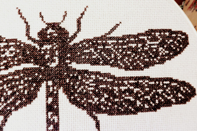Dragonfly cross stitch