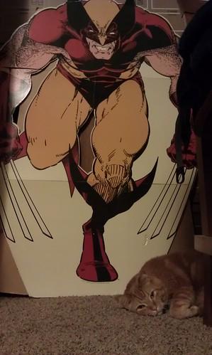 Hanging w/ Wolverine