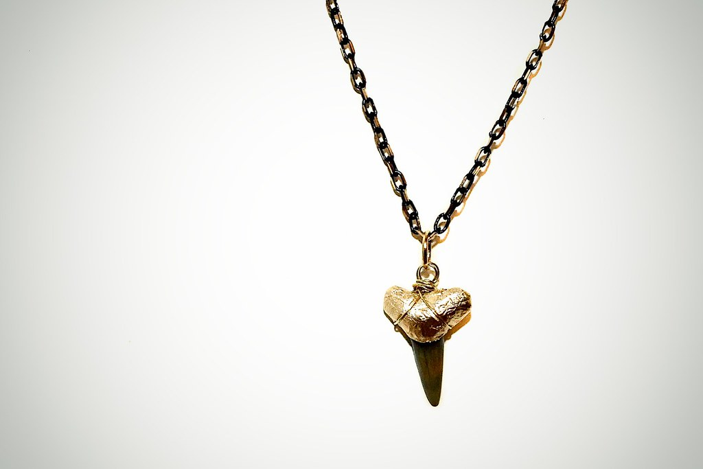 diy gold tipped shark tooth necklace covetous creatures