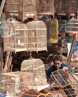Bird cage seller
