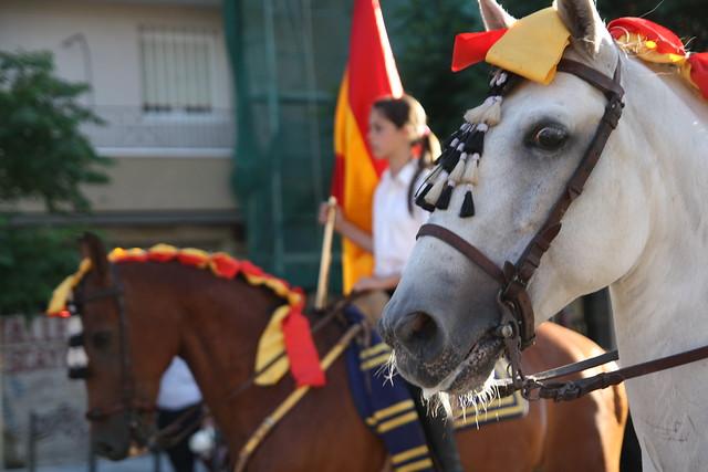 Caballos en procesión religiosa por Tetuán