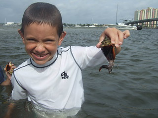 Joey with a fighting conch.