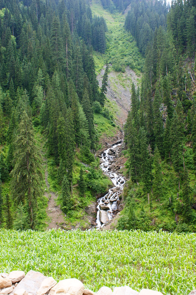 """MJC Summer 2012 Excursion to Neelum Valley with the great """"LIBRA"""" and Co - 7595548752 351df16f08 b"""