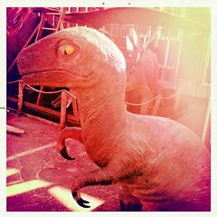 Velo-ci-Raptor!